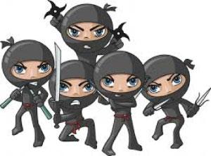 party-ninjas